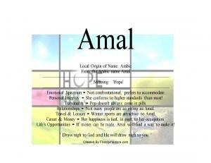 amal-300x231
