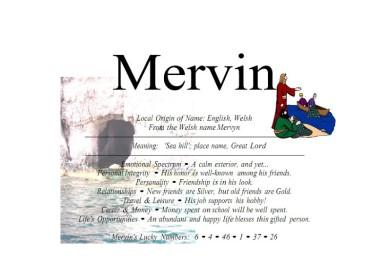 mervin_001-300x212