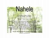 nahale-300x231