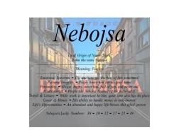 nebojsa_001