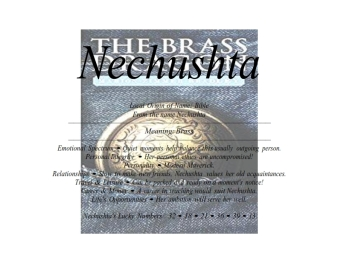 nechushta_001