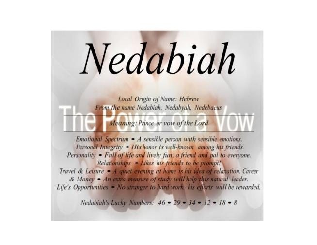 nedabiah_001