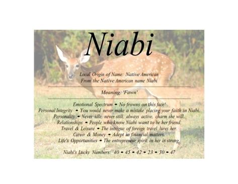 niabi_001