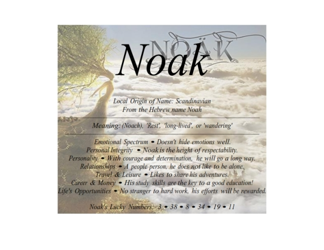 noak_001