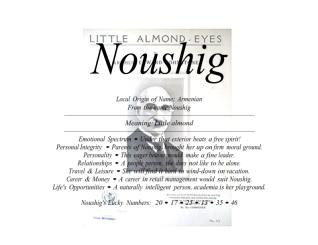 noushig_001