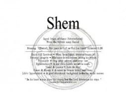 shem-300x228