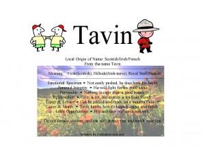 tavin-300x213